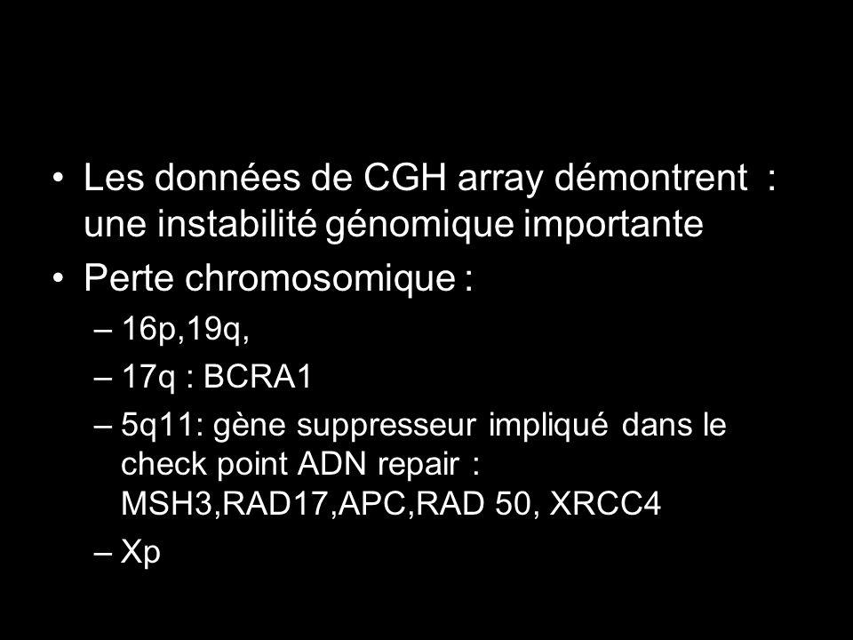 Les données de CGH array démontrent : une instabilité génomique importante
