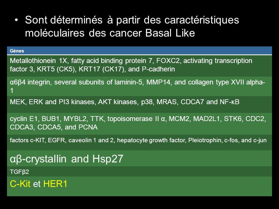 Sont déterminés à partir des caractéristiques moléculaires des cancer Basal Like