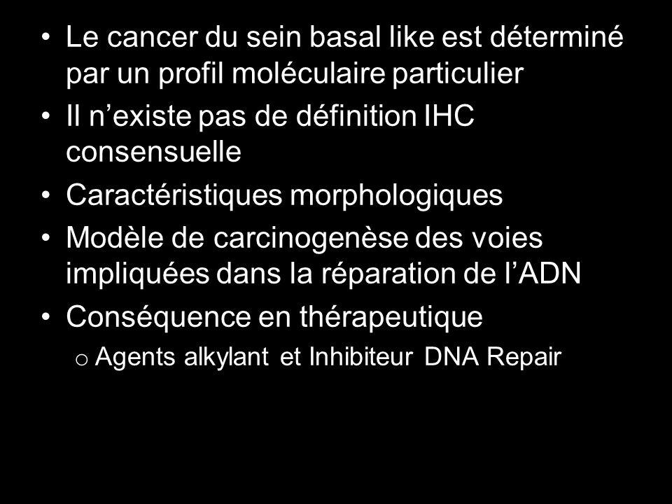 Il n'existe pas de définition IHC consensuelle