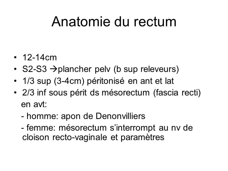 Anatomie du rectum 12-14cm S2-S3 plancher pelv (b sup releveurs)