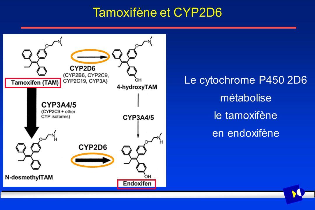 Tamoxifène et CYP2D6 Le cytochrome P450 2D6 métabolise le tamoxifène