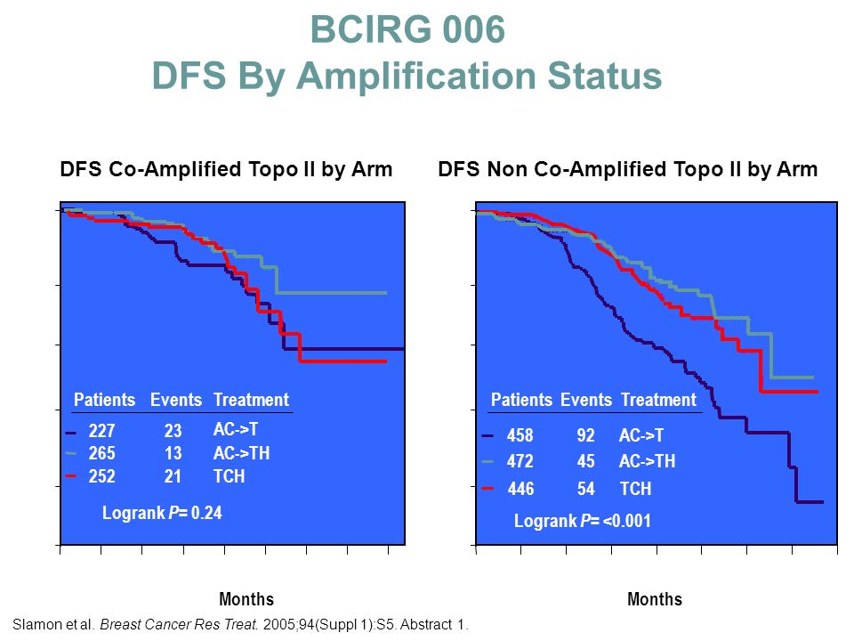 BCIRG 006 DFS By Amplification Status