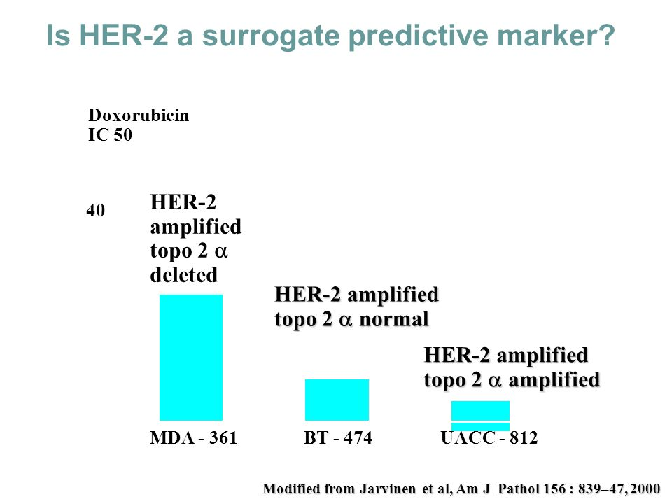 Is HER-2 a surrogate predictive marker