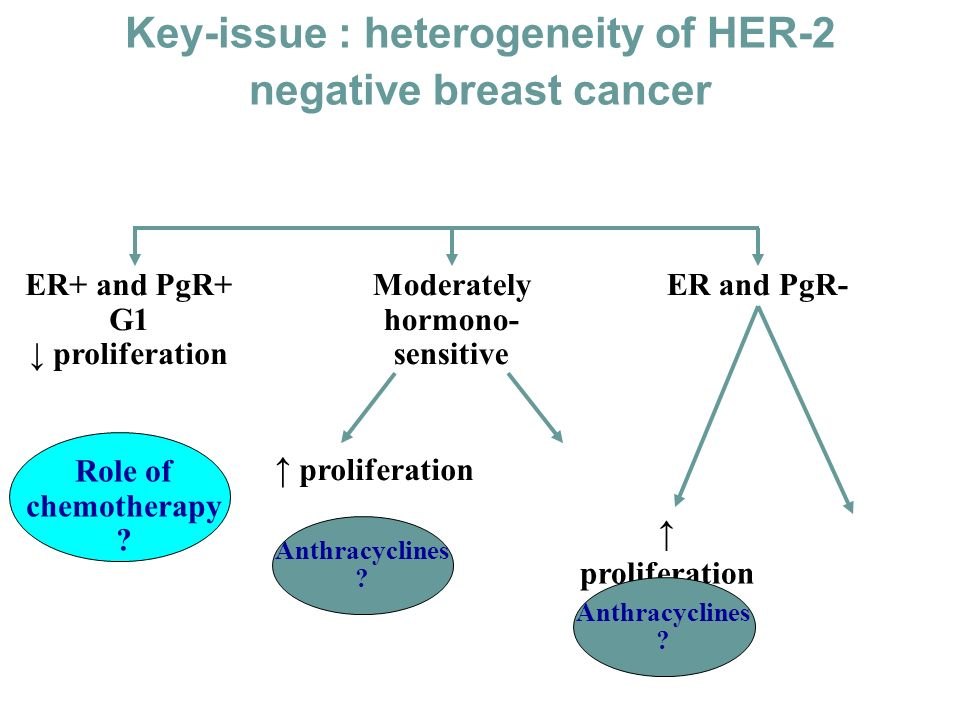 Key-issue : heterogeneity of HER-2 negative breast cancer