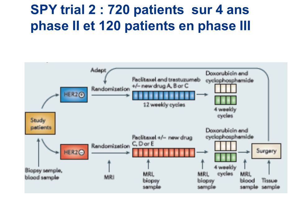 SPY trial 2 : 720 patients sur 4 ans phase II et 120 patients en phase III