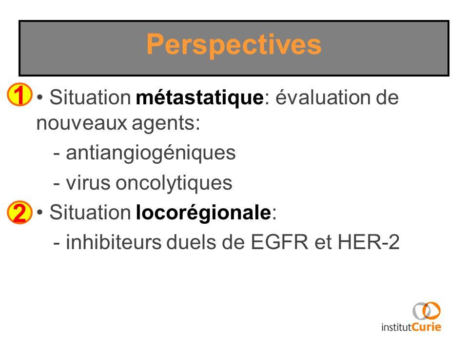Perspectives 1. Situation métastatique: évaluation de nouveaux agents: - antiangiogéniques. - virus oncolytiques.