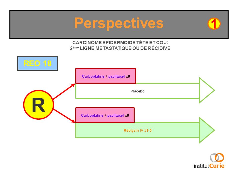 Perspectives 1. CARCINOME EPIDERMOIDE TÊTE ET COU: 2ème LIGNE METASTATIQUE OU DE RÉCIDIVE. REO 18.