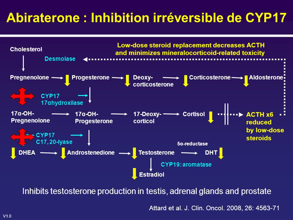 Abiraterone : Inhibition irréversible de CYP17