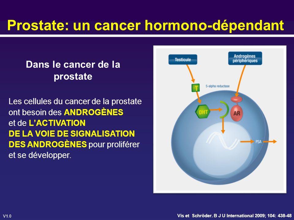 Prostate: un cancer hormono-dépendant