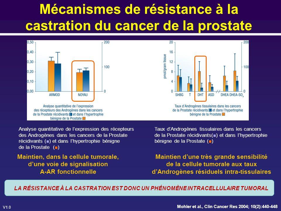 Mécanismes de résistance à la castration du cancer de la prostate
