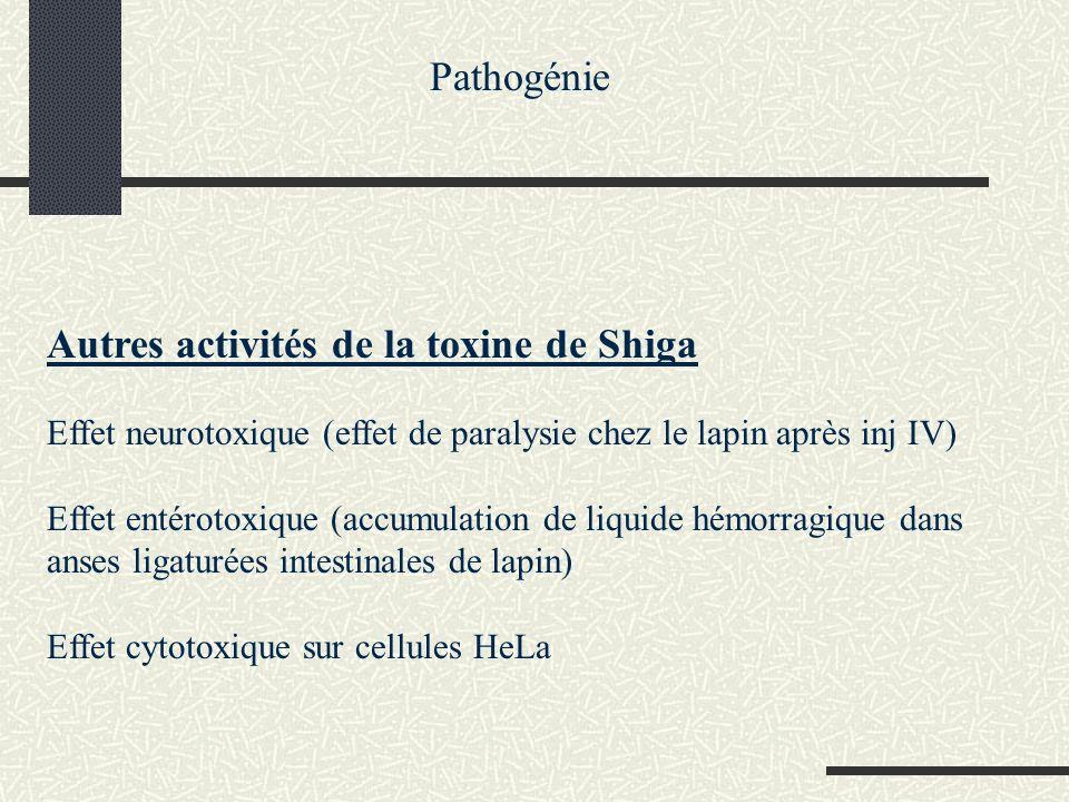 Autres activités de la toxine de Shiga