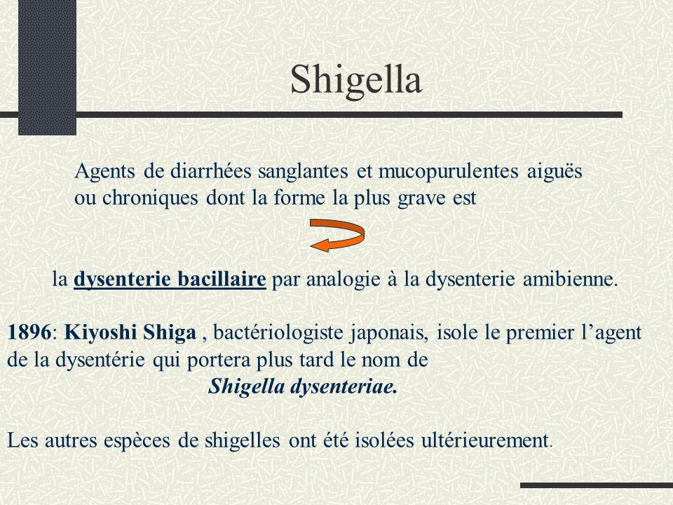 Shigella Agents de diarrhées sanglantes et mucopurulentes aiguës
