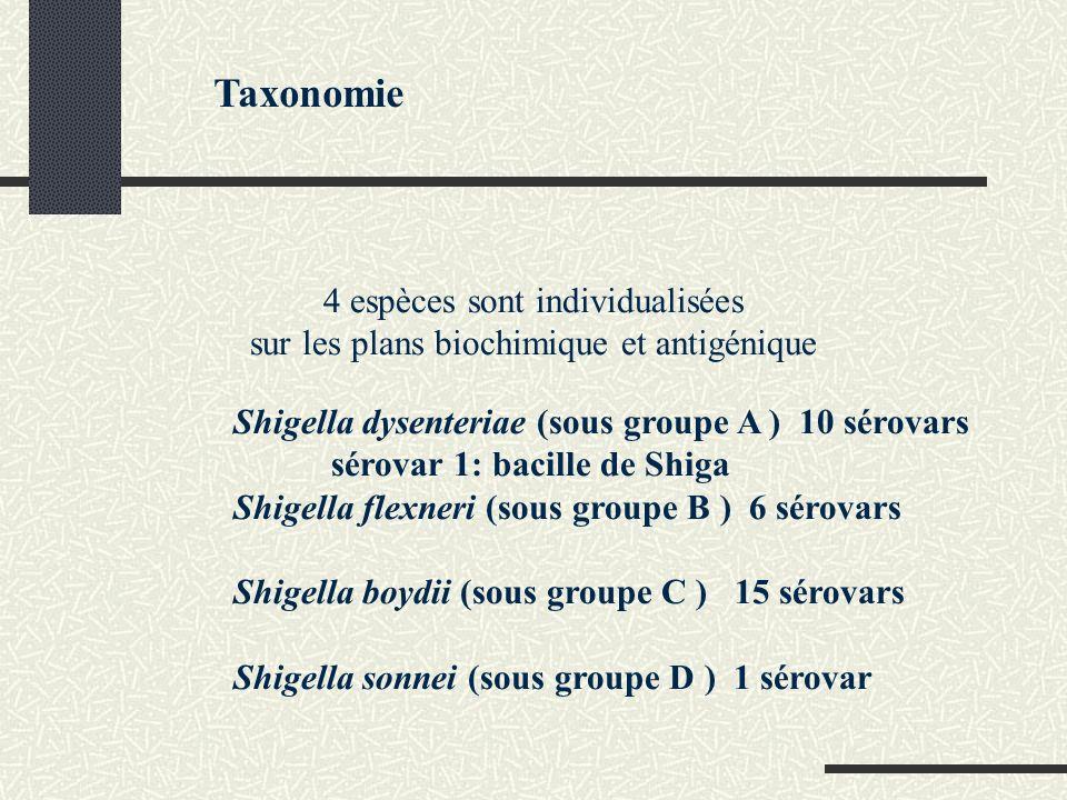 Taxonomie 4 espèces sont individualisées