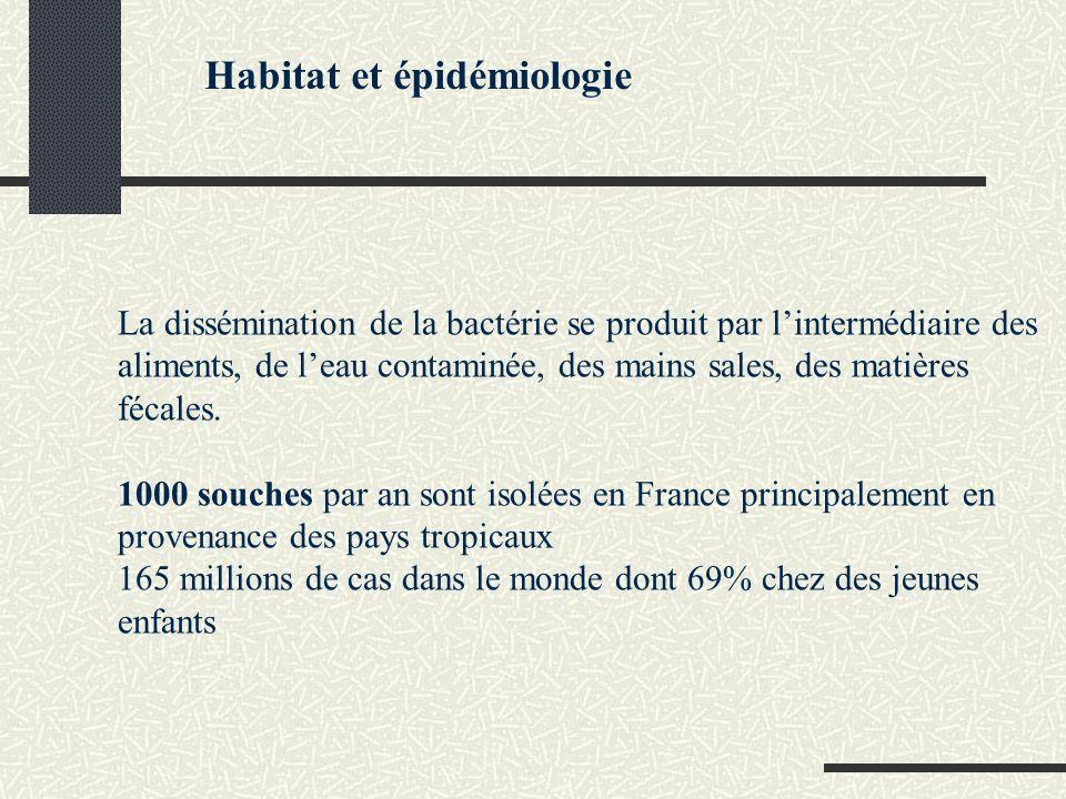 Habitat et épidémiologie
