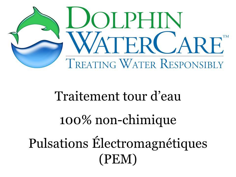 Pulsations Électromagnétiques (PEM)
