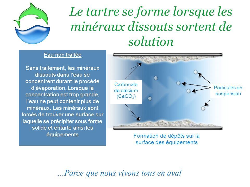 Le tartre se forme lorsque les minéraux dissouts sortent de solution