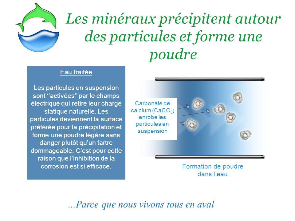 Les minéraux précipitent autour des particules et forme une poudre
