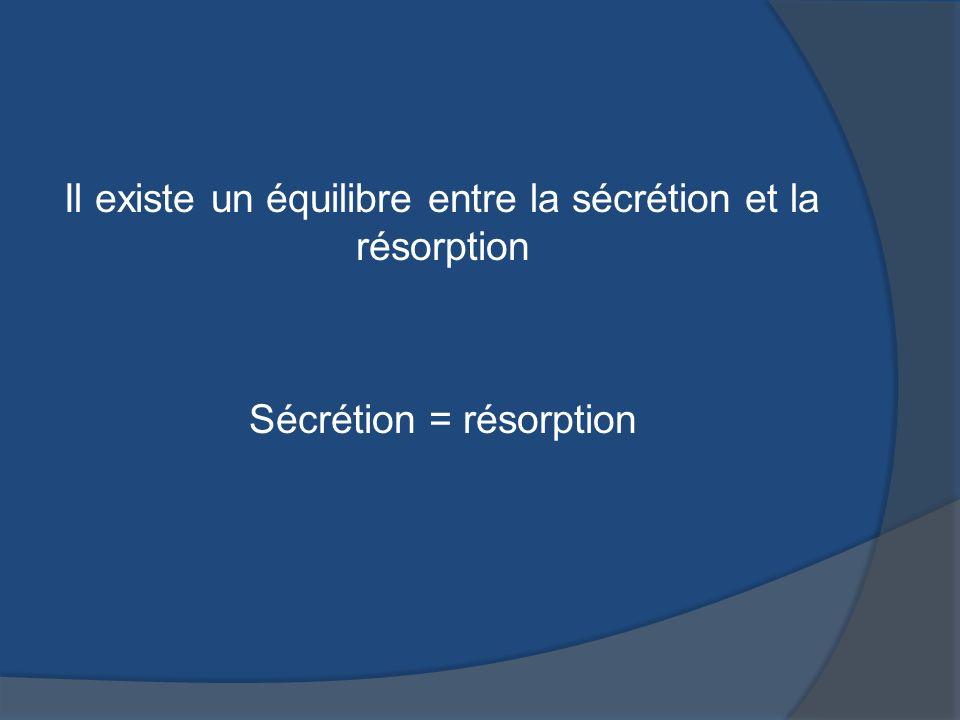 Il existe un équilibre entre la sécrétion et la résorption Sécrétion = résorption