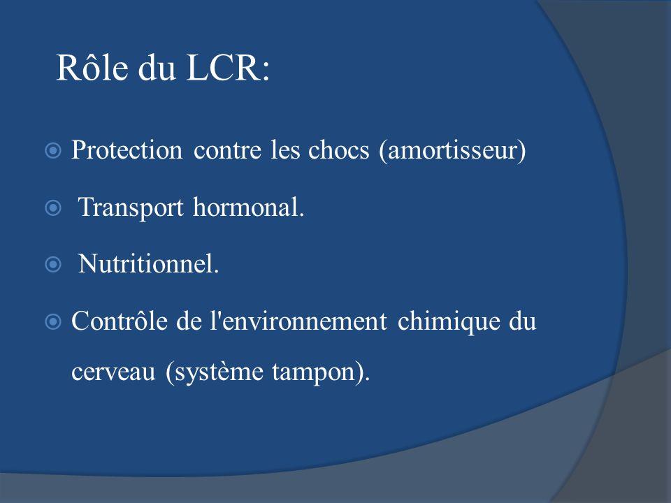 Rôle du LCR: Protection contre les chocs (amortisseur)