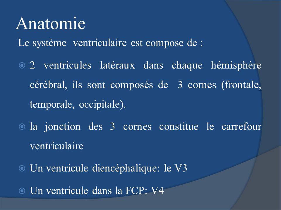 Anatomie Le système ventriculaire est compose de :