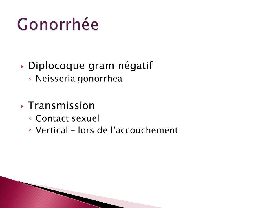 Gonorrhée Diplocoque gram négatif Transmission Neisseria gonorrhea