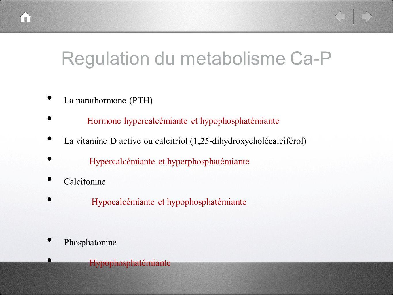 Regulation du metabolisme Ca-P