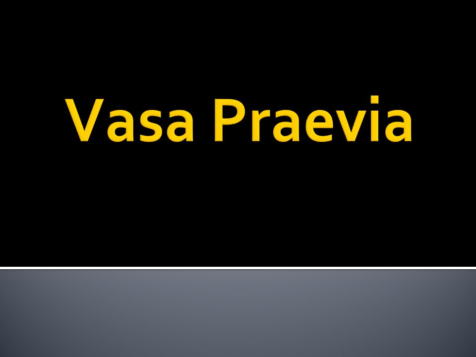 Vasa Praevia
