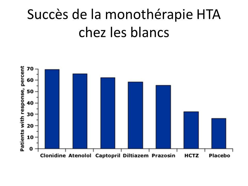 Succès de la monothérapie HTA chez les blancs