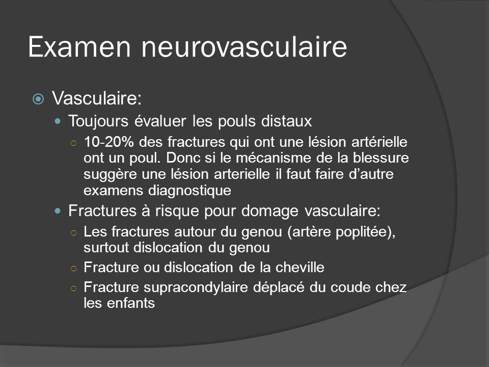 Examen neurovasculaire