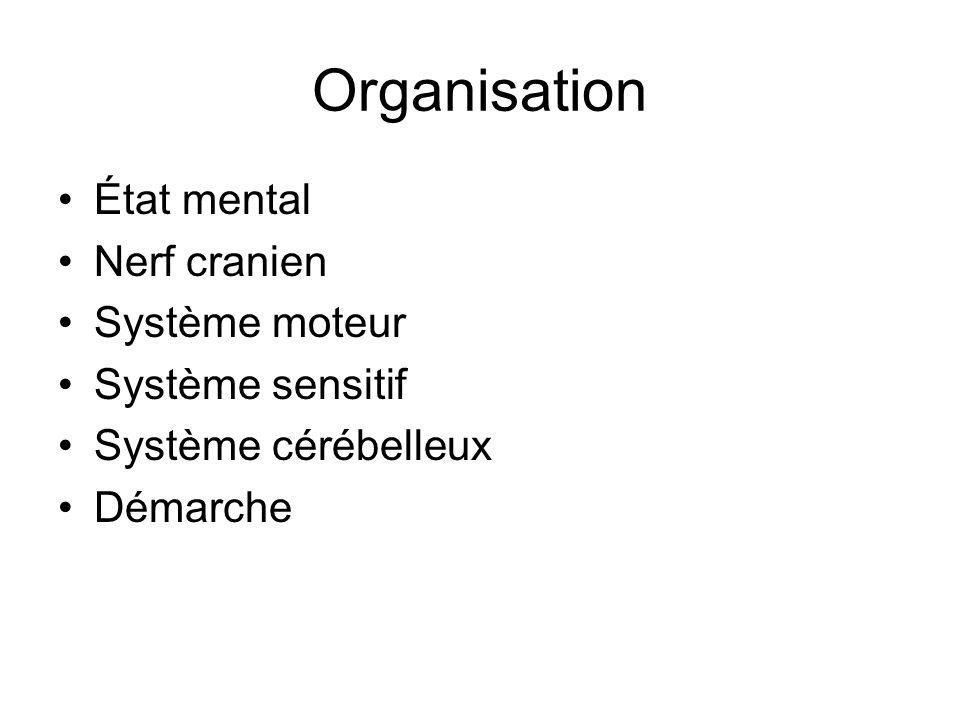 Organisation État mental Nerf cranien Système moteur Système sensitif
