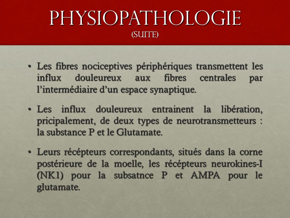 Physiopathologie (suite)