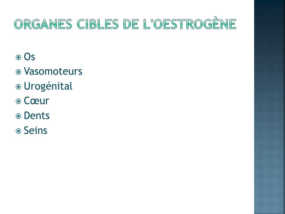Organes cibles de l oestrogène