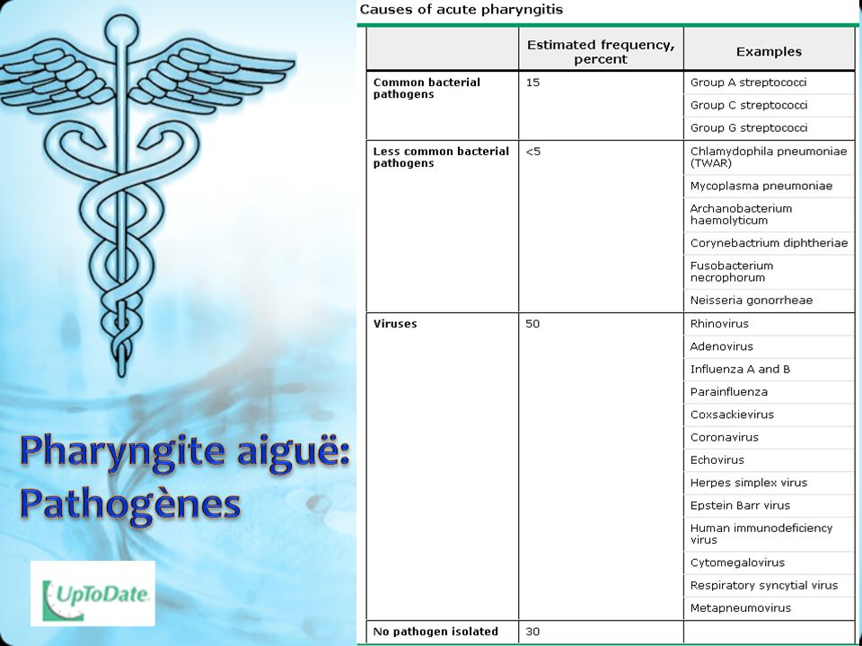 Pharyngite aiguë: Pathogènes