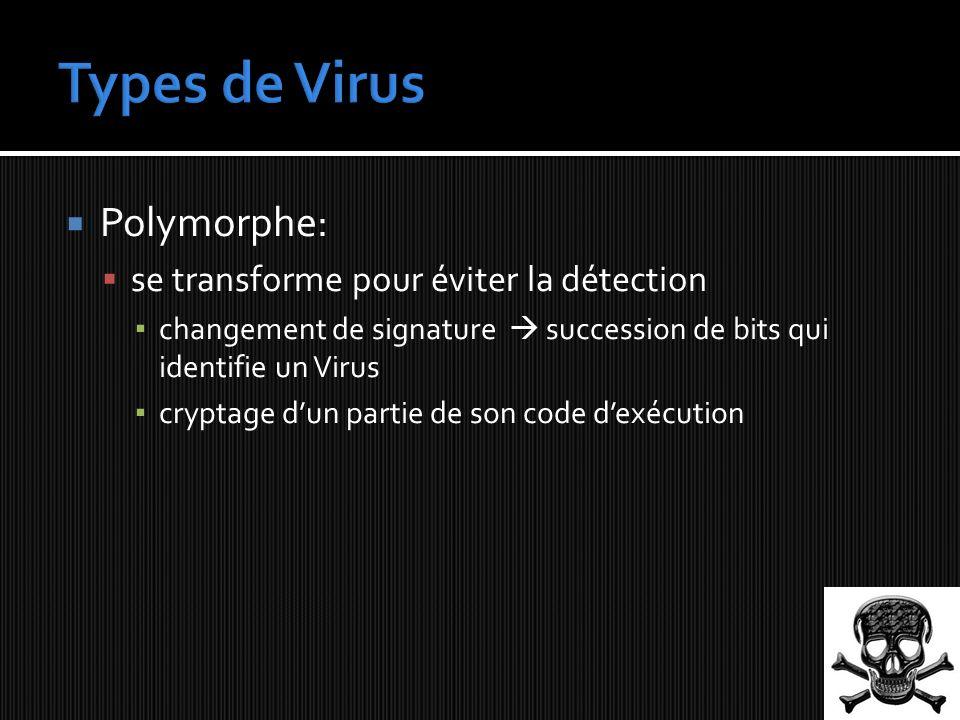 Types de Virus Polymorphe: se transforme pour éviter la détection