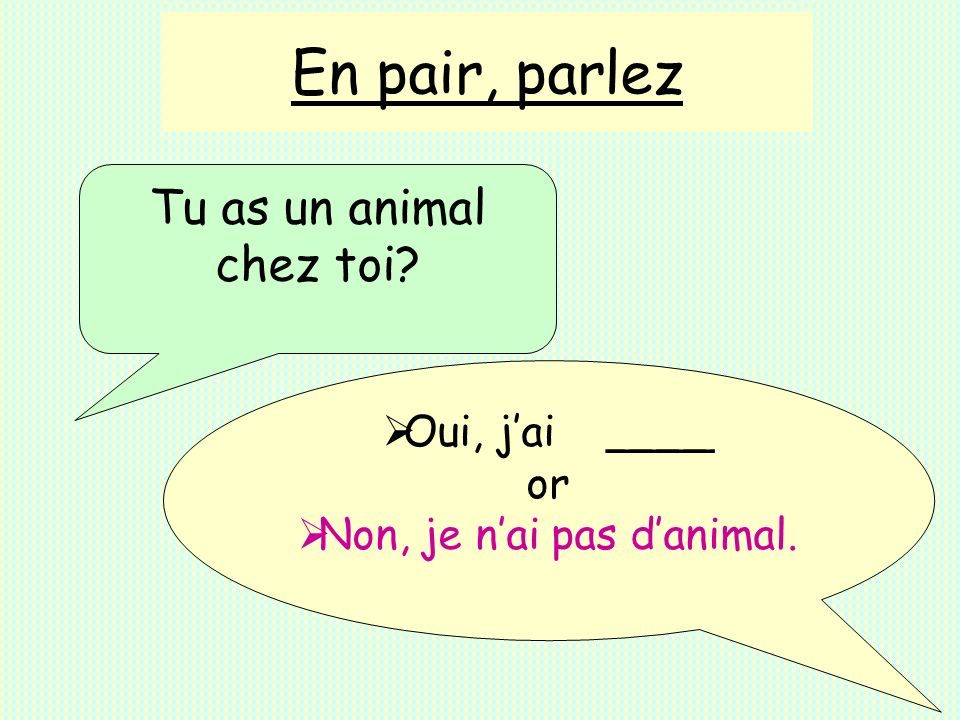 Non, je n'ai pas d'animal.