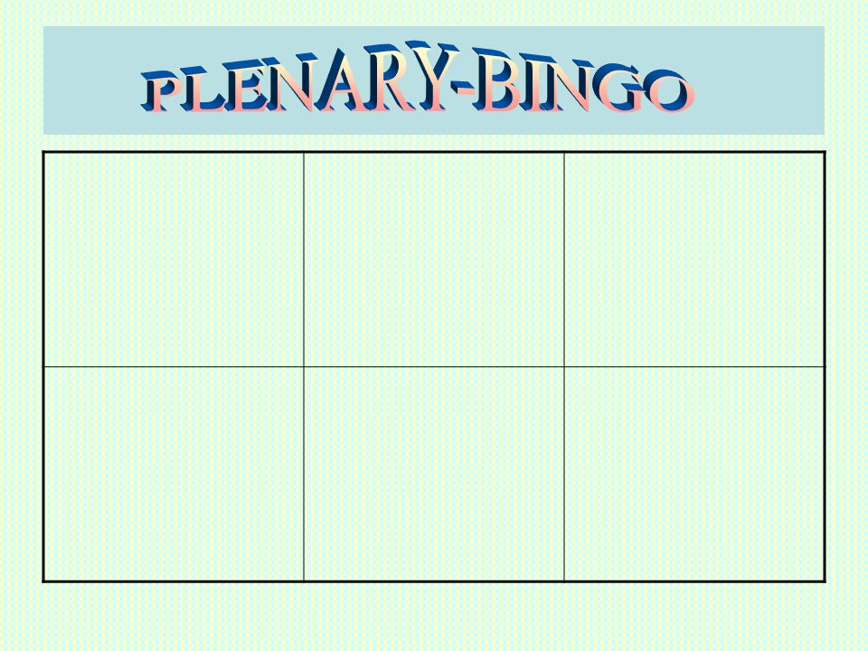 PLENARY-BINGO