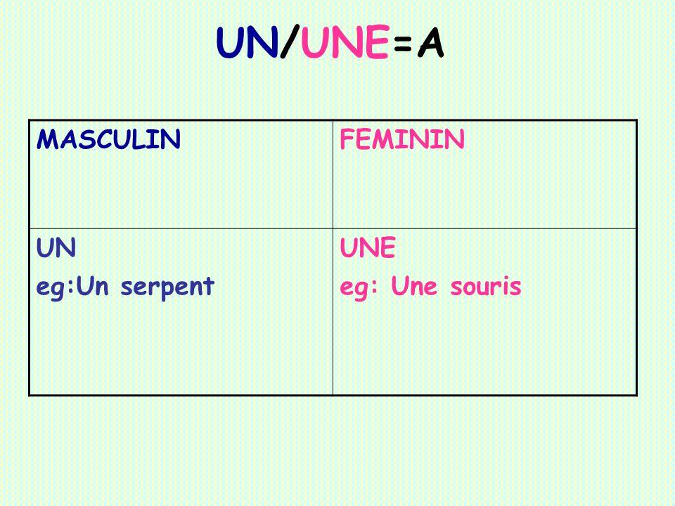 UN/UNE=A MASCULIN FEMININ UN eg:Un serpent UNE eg: Une souris