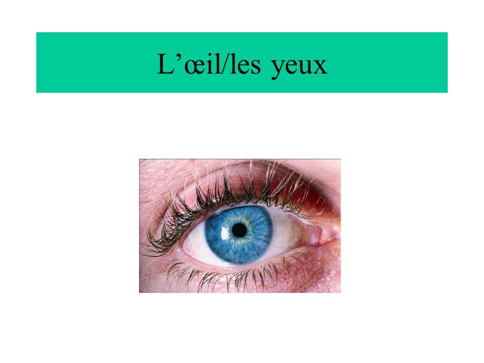 L'œil/les yeux