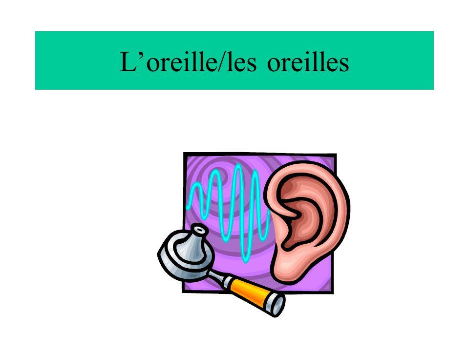 L'oreille/les oreilles