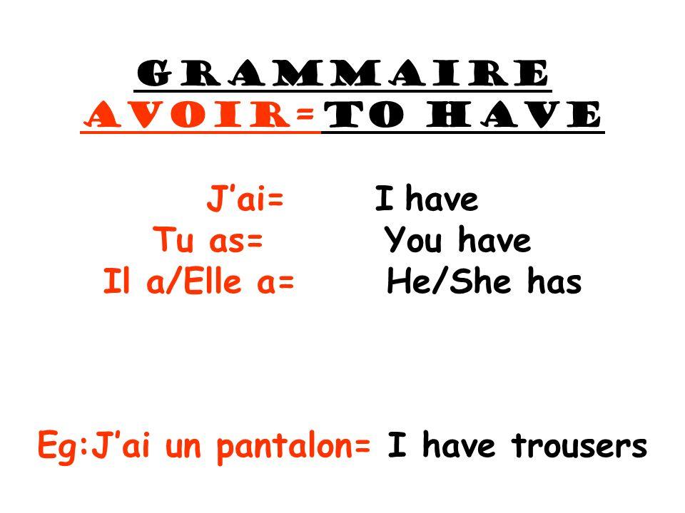 Eg:J'ai un pantalon= I have trousers