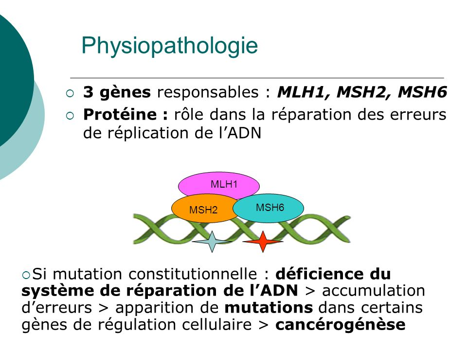 Physiopathologie 3 gènes responsables : MLH1, MSH2, MSH6