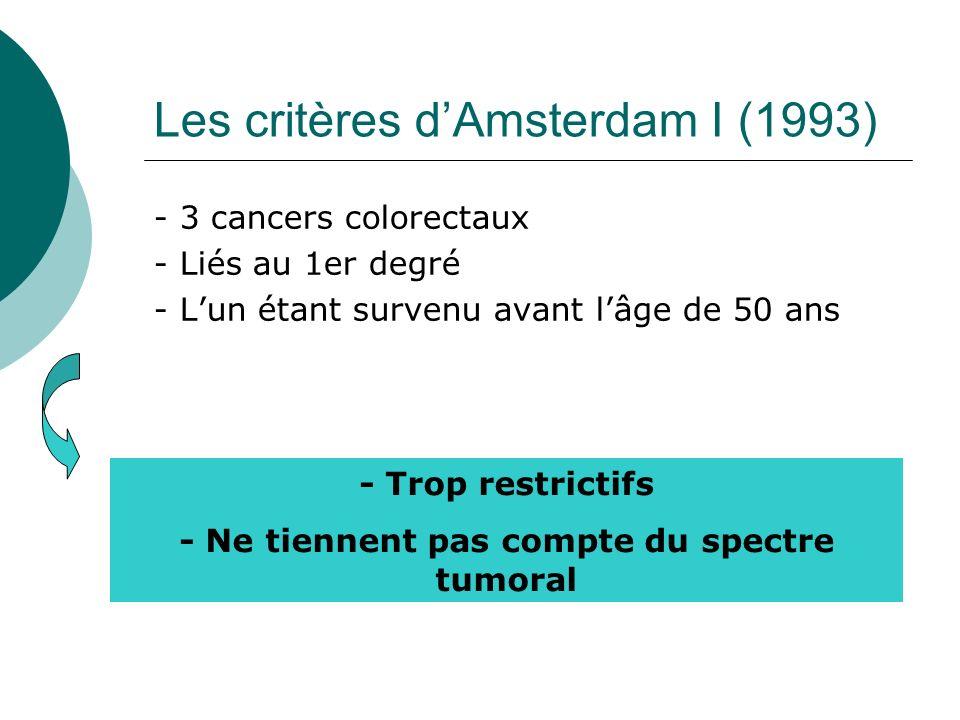 Les critères d'Amsterdam I (1993)