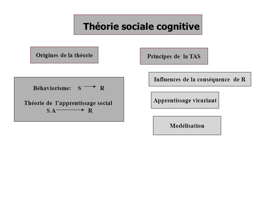 Théorie sociale cognitive