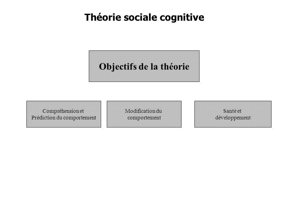 Objectifs de la théorie
