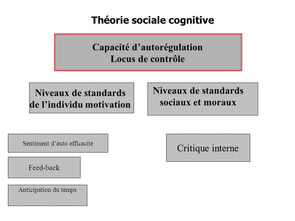 Capacité d'autorégulation de l'individu motivation