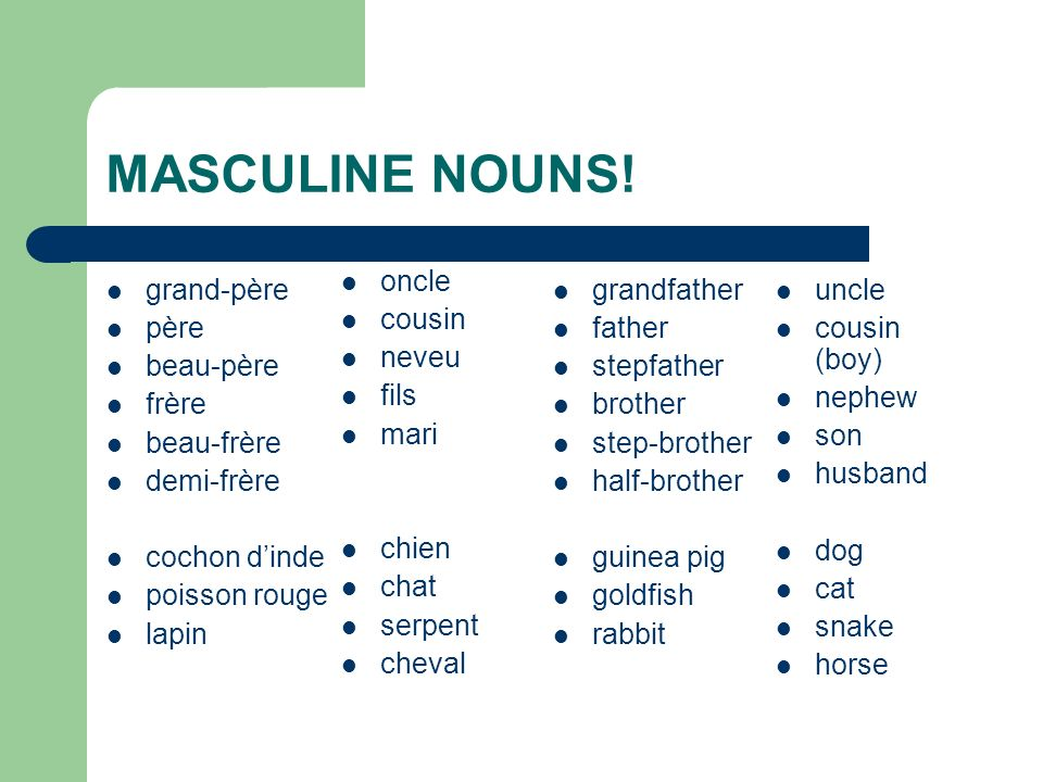MASCULINE NOUNS! oncle cousin neveu fils mari chien chat serpent