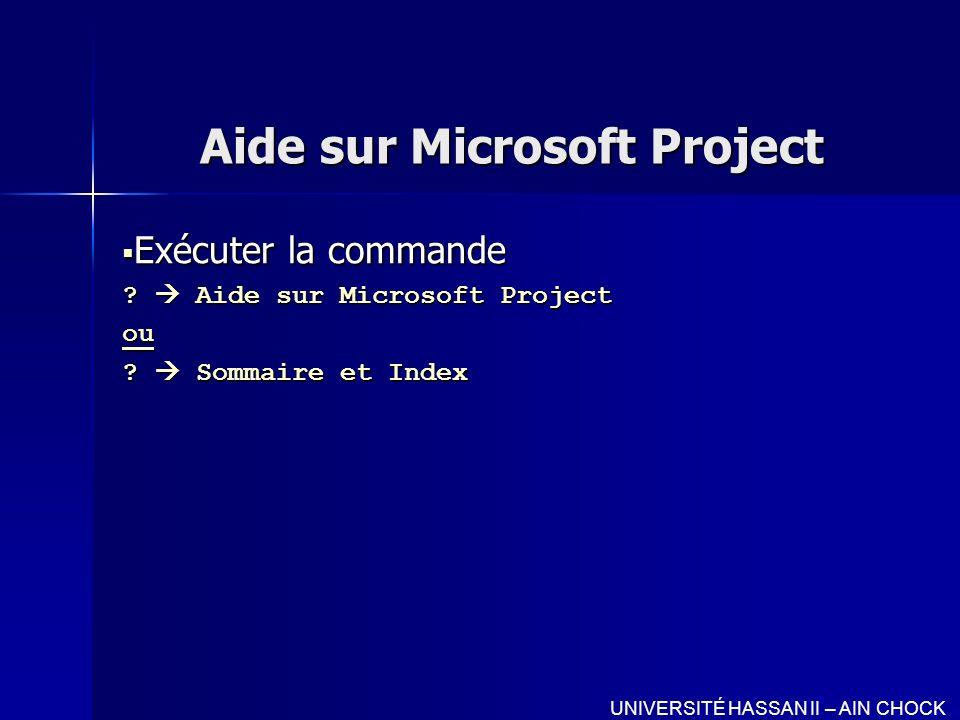 Aide sur Microsoft Project