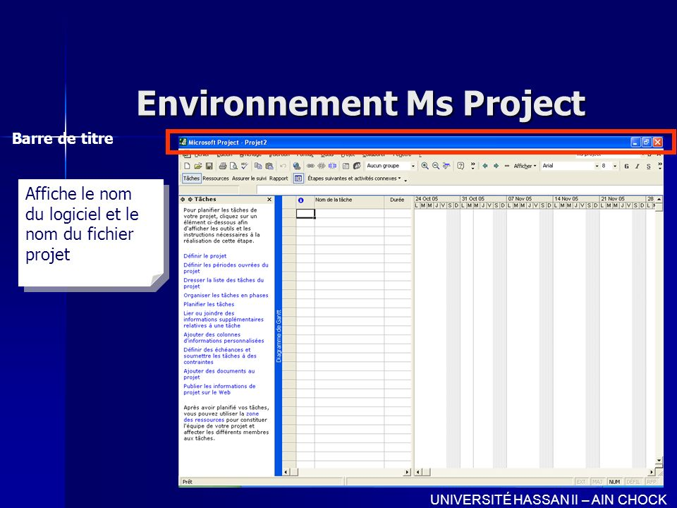 Environnement Ms Project