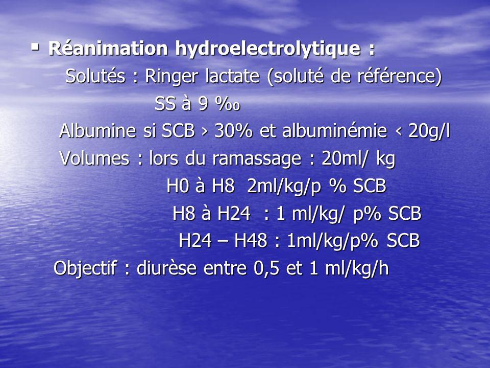 Réanimation hydroelectrolytique :