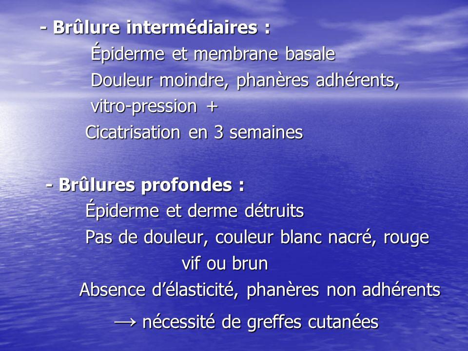 - Brûlure intermédiaires :
